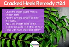 Cracked feet are unsightly and painful. People suffering from cracked feet or heel fissures usually hide their feet in stuffy shoes. Aside from the physical embarrassment of the condition, most people who have dry feet Dry Cracked Heels, Cracked Feet, Skin Care Home Remedies, Home Remedies For Hair, Cracked Heel Remedies, Soft Feet, Natural Moisturizer, Tea Tree Oil, Feet Care