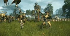 Total War: Warhammer's DLC gets a bit more ambition with the Wood Elves