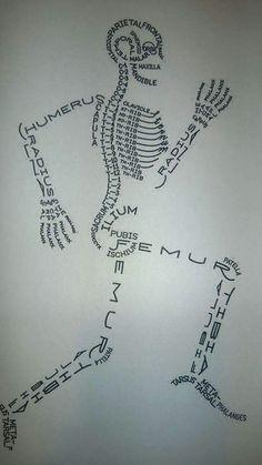 Skeleton drawn using bone names!