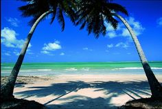 Carneiros Beach, Brazil to-boldly-go