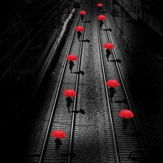 Beautiful colorful pictures and Gifs: Raining Day gifs-Bajo la lluvia fotos Umbrella Art, Under My Umbrella, Splash Photography, Color Photography, Color Splash, Color Pop, Red Color, Rain Days, Gifs
