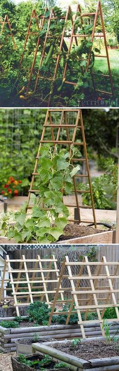 Sturdy A-frame Trellis Panels That Can be Folded Up When Not in Use #diytrellis #gardeningtips