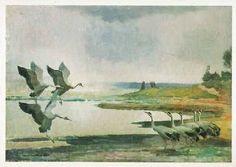 """Lennart Rafael Segerstråle (1892-1975)  -  'Kurkija lentää ronkuen pohjoseen"""", kirjoitti lintumaalari Lennart Segerstråle havaintovihkoonsa Karjalankannaksen Äyräpäänjärvellä toukokuussa 1932."""