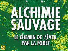 le livre Alchimie Sauvage renferme certaines des plus belles pratiques qui nous lient au cycle des 4 saisons. Bonne découverte !  #forest #arbre #tree #nature #spiritual #spiritualité
