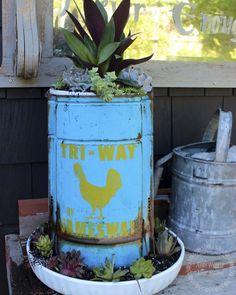 chicken feeder planter on potting bench