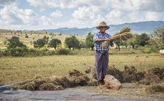 Trek en Birmanie – Les 5 meilleurs itinéraires