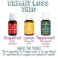 Younger Dwelling Important Oils: Grapefruit Lemon Peppermint for Weight Loss. Member...