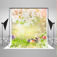 Easter Theme Photo Background For Baby Kids Photo Booth B... https://www.amazon.co.uk/dp/B06X3QGN35/ref=cm_sw_r_pi_dp_x_CpvUybR0AME78