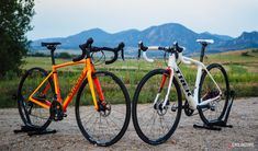 Specialized Roubaix vs. Trek Domane: Clash of the endurance bike titans