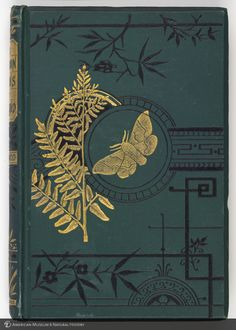 The Common Moths of England, 1870.