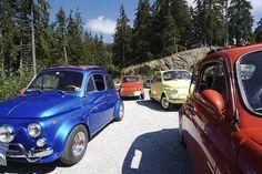 Fiat 500 - family portrait #fiat500