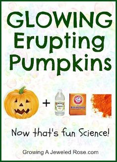 Glowing Erupting Pumpkins!  Need: A pumpkin, vinegar, baking soda, homemade glowing chalk (crushed up) and a blacklight.