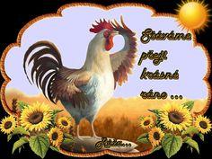 Good Morning, Rooster, Night, Animals, Random Stuff, Buen Dia, Animales, Bonjour, Animaux