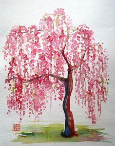 Cherry tree!