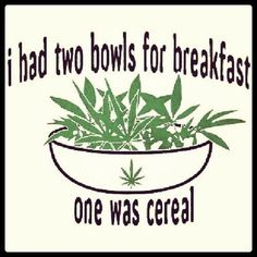 Cannabis: breakfast of champions! Marijuana Art, Medical Marijuana, Ganja, Weed Quotes, Stoner Quotes, Mj Quotes, Stoner Art, Badass Quotes, Qoutes