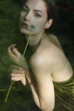 u1der: Jeanette Winterson, Military Green, Army Green, Olives, Dandelions, Dell Anima, Dandelion Wish, Shades Of Green, 50 Shades