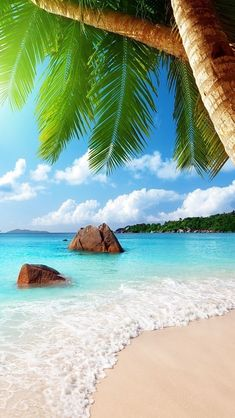 Praslin Island ,Seychelles