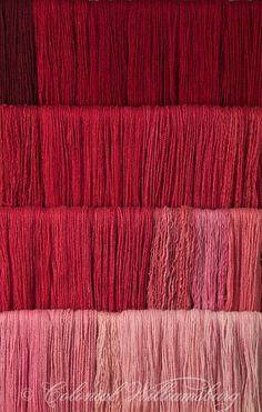 Studio photography of various colors of yarn dyed at the Weaver's shop in Colonial Williamsburg. Shot for book by Max Hamerick on dyeing textiles; Red dyed with Cochineal combined with Madder Photo by Barbara Temple Lombardi