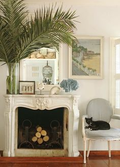 The 20 Funniest Blog Posts On Laurel Home - laurel home | oh I love this fireplace mantel in the lovely home of the beatific and hilarious India Hicks. But, let's take a closer look at the palm tree sitting in a ginormous GLASS vase perilously close to the edge of the fireplace. Find out what happens next when the children start swinging from the branches...