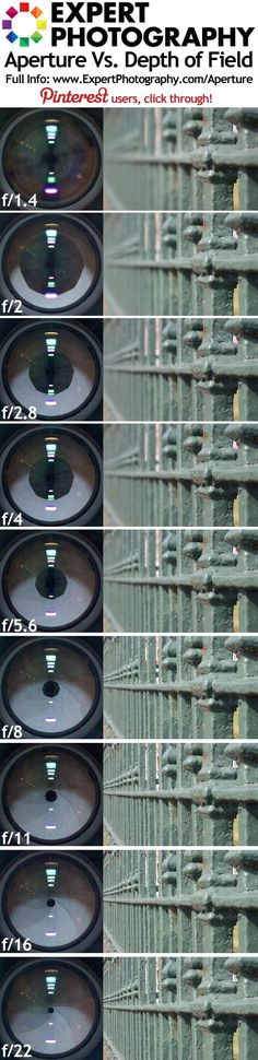 Aperture Vs. Depth of Field Visual Guide by bertie
