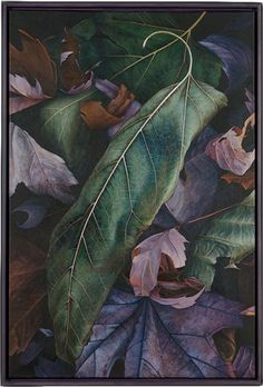 Autumn leaves painting entitled 'Long and Short' by Dan Bacich. Acrylic painting. Beautiful compositions!