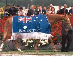 SAINTLY (Aus) Ch g 1992, Sky Chase - All Grace. 23 starts, 10 wins, 11 placings. Winner 1996 VRC Melbourne Cup, MVRC W S Cox Plate and Australian Cup. Unfashionably bred by his champion trainer, Bart Cummings at his historic Princes Farm Stud in NSW, the gelding shone through on the track, unplaced only twice in his career. Breaking down shortly after his 1997 C F Orr Stakes win, he retired in July 1998. Now a beloved attraction at Living Legends, the home of rest for horses near Melbourne.