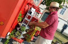backoffice&more - Bilder - Mobile Kräutertürme von Herbios Kraut, Plants, Pictures
