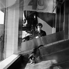 Vivian Maier :: Self portrait [with cat], 1955 more [+] by V. Maier