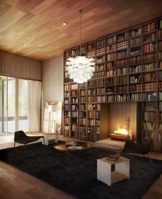 Ok... fireplace it library equals liability but nice pic in theory