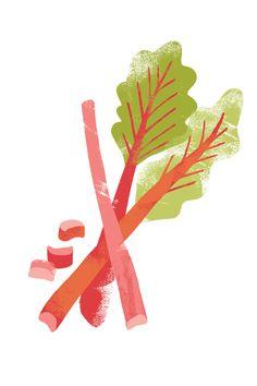 NANNA Prieler :: rhubarb