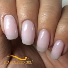 Bio Seaweed Gel - Cotton Angel #05 - creamy and translucent beige
