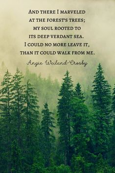Tree Quotes & Tree Poetry That Branch to Your Soul