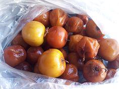 Indigenous Fruits of Zimbabwe - The Sovereign State Zimbabwe Food, Organic Farming, Planting, Gardening, Fruit, Vegetables, Food Food, Foods, Google Search