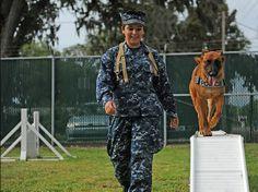 Mayport, Fla. (21 de junio de 2012) Maestro de Armas marinero Sharon Berg, un manejador de K-9 con la unidad de perros de trabajo militar en la Estación Naval de Mayport, dirige su compañero K-9, KKowalski, a través de una carrera de obstáculos en el perrera base. Berg dirige el curso con KKowalski varias veces al día para promover la resistencia y las habilidades motoras. (Marina de los EE.UU. las fotos de Comunicación  Especialista marinero Damian Berg