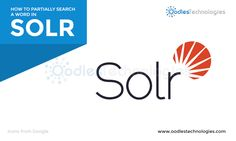 How to partially search a word in solr