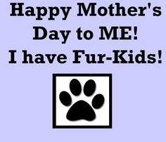 happy mother's day to me! i have fur-kids! And I bet you I look after my babies better than some human mothers.. So there to all mums who think they are better than a fur mum..
