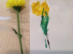 Flower-3 yr old