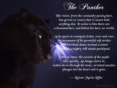 The Panther by Rainer Maria Rilke