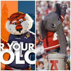 It's Wear Your College Colors Day! What colors are you wearing today? War Eagle or Roll Tide? Let's make it a contest! Go to http://woobox.com/kid7q5 and tell us, and you could win a $25 Visa gift card!