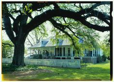 16.  View from northeast looking to house (duplicate of HABS No. LA-1192-7) - Oakland Plantation, Route 494, Bermuda, Natchitoches Parish, LA