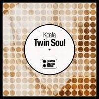 Koala - Twin Soul by Elektrik Dreams Music on SoundCloud Dream Music, Twin Souls, Twins, Dreams, Soul Mates, Gemini, Twin