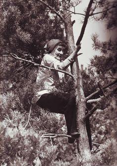 Det står väl inte i Mose lag att gamla kärringar inte får klättra i träd - Astrid Lindgren