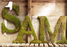 "DIY PB Inspired Moss Monograms :: Made w/ 1"" foam (w/ a trick to attach 2 pieces of foam if you want a larger monogram), spray adhesive & moss cloth (you can print out a large letter on multiple pages to trace onto the foam before cutting)"