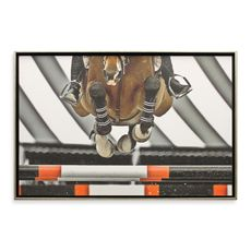 Airborne 26' x 38' Horse Photo Art - Bed Bath & Beyond