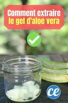 How to Extract Aloe Vera Gel from a Fresh Plant (Easy And Fast). Best Nutrition Food, Athlete Nutrition, Nutrition Plans, Nutrition Information, Fitness Nutrition, Health And Nutrition, Health And Wellness, Health Care, Nutrition Guide