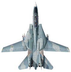 Iranian F-14