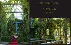 Nature Chapel by SalsolaStock