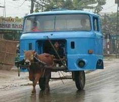 Les voitures du futur, quand on n'aura plus de pétrol mais qu'il nous restera des idées..