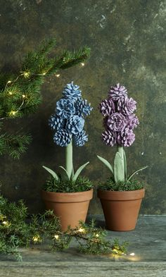The best part about Christmas decorations are that we can use natural things for decoration. Herer are Pine cone crafts for Christmas that are really cute. Pine Cone Christmas Tree, Christmas Tree Crafts, Christmas Decorations, Christmas Christmas, Fall Crafts, Diy Crafts, Holiday Centerpieces, Flower Centerpieces, Pinecone Fire Starters