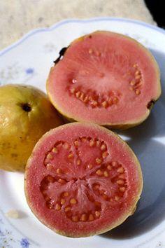 Guayaba, guava...